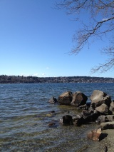 Looking north-west onto Lake Washington